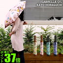 It is (S) [umbrella shade umbrella folding lightweight lady's fair or rainy weather combined use parasol folding UV cut UV woman] 0% of [until tomorrow comfortable 18:00] folding umbrella OFESS ISABRELLA KAYO HORAGUCHI オフェスイザブレラカヨホラグチ [Φ 98cm]
