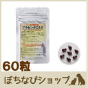 プラセンタQ10(犬・猫用) 60粒 ペット用 アンチエイジ