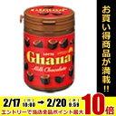 ロッテガーナミルクボトル118g×6ボトル入 [チョコレート]
