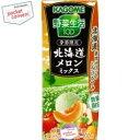 カゴメ野菜生活100北海道メロンミックス 195ml紙パック 24本入(野菜ジュース)