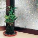 GLC 4607 窓飾りシート レンズタイプ 46cm丈×90cm巻 クリアー