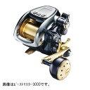 【訳あり 売り尽し55%OFF】シマノ(SHIMANO) ビーストマスター 3000(ss12rodre)