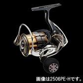 ダイワ(Daiwa) イグジスト 2506PE−H