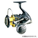 シマノ(SHIMANO) ステラSW 6000HG