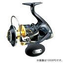 シマノ(SHIMANO) ステラSW 10000PG