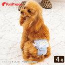 小型犬用 ベルト型サニタリーパンツ フリルオーガンジー 4号