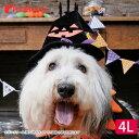 犬服 犬用品 ペットグッズ ハロウィン SNS インスタ映え コスチューム コスプレ ハロウィン帽子 4Lマジョッコハット