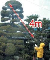 直射4m高木もOK!