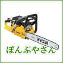 Ryb065t