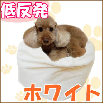 Beyond the memory foam Marshmallow cushion bed (people & pets combined) and motherboard? / Sale ★ SALE / / /aff _ th3 / support /