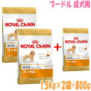 Royal Cannan poodle adult dog, 1.5 kg *2 bag (+800 g of presents) for old dogs [free shipping] 10P23may13 [tomorrow easy correspondence]