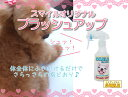 200 ml of smile brushing up [smile original] [free shipping] 10P23may13 [tomorrow easy correspondence]