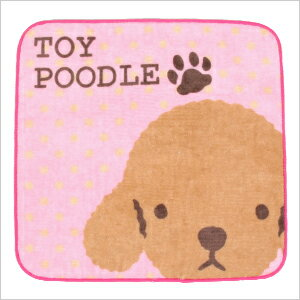 We walk together REAL DOG towel toy poodle