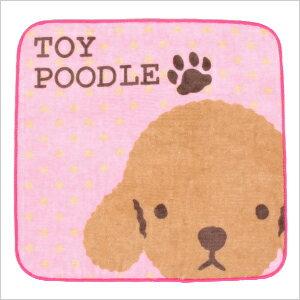 We walk together REAL DOG towel toy poodle