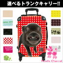 THE DOGカスタマイズ キャリーバッグ PIG【送料無料】 THEPIG/豚/ブタ/ぶた/キャリーケース/キャリーカート/トランクケース/旅行カバン/グッズ