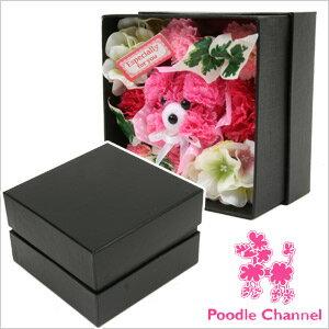 プードルアレンジBOX カーネーションプードル(QFO-6144) ギフト/プレゼント/お祝い/贈り物/トイプードル/プードル/カーネーション/母の日/クリスマス/造花/ペット供養/手元供養/メモリア