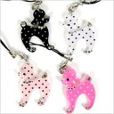 Positive trap dot poodle [poodle / miscellaneous goods / carrying / accessories / goods / dog / dog]