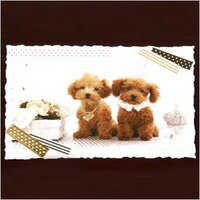 Wave cut postcards poodle