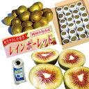 訳あり! レインボーレッドキウイ Lサイズ約24個(約2.6Kg) 果実にキズが付いているので、少しお安くお試しください。
