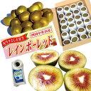 訳あり! レインボーレッドキウイ Mサイズ約24個(約2Kg) 果実にキズが付いているので、少しお安くお試しください。