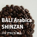 コーヒー豆 バリ アラビカ 神山 500g