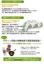 自然素材琉球文化化粧品 月桃洗顔石けん【sswf1】...