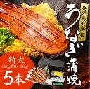 特大うなぎ 蒲焼き 5尾 国産 鹿児島産 (1尾あたり200...