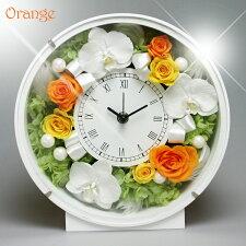 花時計胡蝶蘭オレンジ