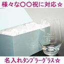 【送料無料!】名入れタンブラーグラス○○祝い専用【名入れグラ...