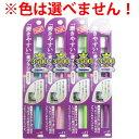 磨きやすい歯ブラシ 奥歯まで フラットタイプ 1本入 LT-11 ※単品販売(色柄指定不可) [キャンセル・変更・返品不可]
