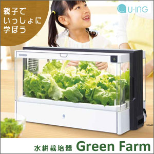 Without soil, grow vegetables. Now the hydroponic cultivation of the attention at home easily. 10P10Nov13, fs3gm,