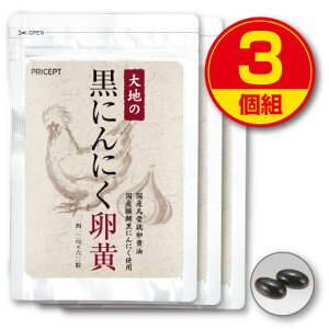 【送料無料】大地の黒にんにく卵黄(3個組)