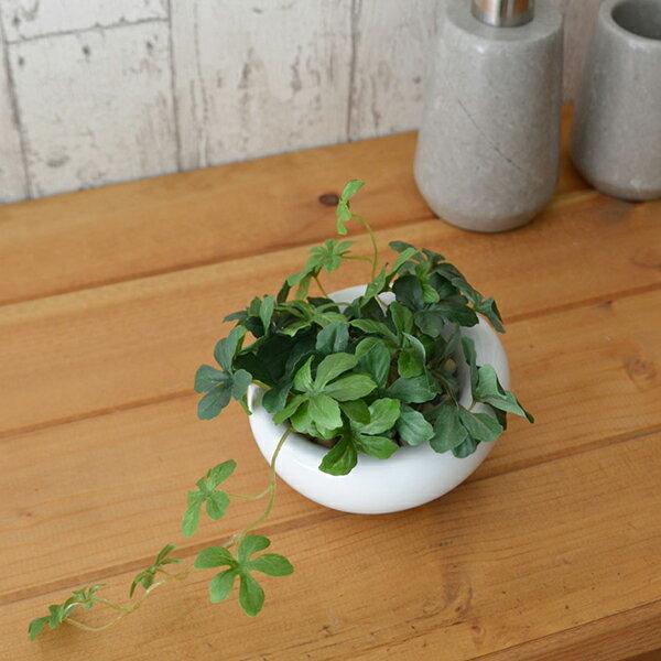 フェイクグリーン 人工観葉植物 造花 ミニ シュ...の商品画像