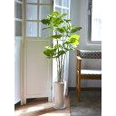 ウンベラータ ウッドチップ 皿付スリムプランター 人工観葉植物 フェイクグリーン 造花 GREENPARK