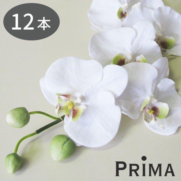 胡蝶蘭 12本セット 造花 アーティフィシャルフラワー PRIMA
