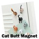 キッカーランド*CAT BUTT...