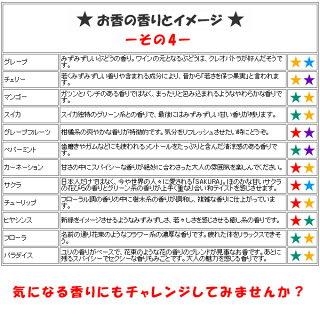【メール便送料無料】お香・コーンタイプ・香りが選べるお試しセット6種類