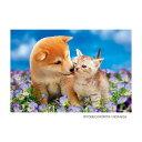 【クーポンあり】ジグソーパズル 300ピース ペット 花畑のデート P33-083 かわいい動物のジグソーパズル☆