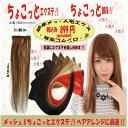 ちょこっとエクステ!! ちょこっと価格!! 2コームスソ人毛エクステ40cm w382 簡単イメージチェンジ OL&学生さんに人気のスタイルに変身!!人毛100%スソエクステはメッシュにも最適、地毛によく合います、売れてます!!