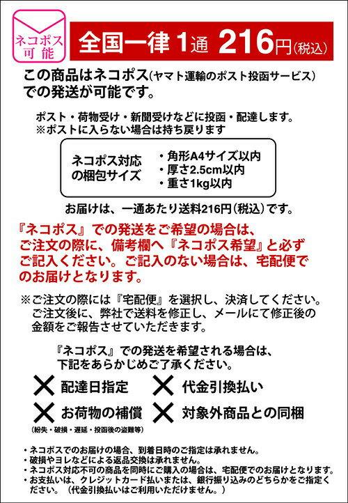 《柳井紙工》カラーピック4色【12本入】の紹介画像2