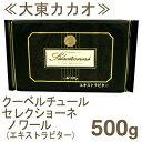 《大東カカオ・クーベルチュールセレクショーネ》ノワール(エキストラビター)【500g】