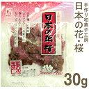 《ヤマシン》日本の花・桜【30g】