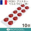 《PCB》ブリスターてんとう虫(赤)【10個入】