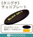 《タニグチ》チョコプレート(BM-13ファインプレート)【10g×1枚】(個包装)