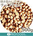 キャラメルチップチョコ【500g】