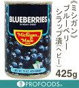 《ミシガン》ブルーベリーシラップ漬(ヘビー)【425g】
