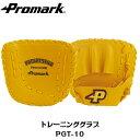 トレーニンググラブ PGT-10(野球グローブ 野球グラブ 軟式野球 硬式・軟式兼用 練習用 特訓 レベルアップ 板 天然皮革 上達)