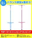 Fsp-1313_1