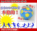 【EnjoyFamily.エンジョイファミリー】 ミニサッカーボール fsp-1619 02P03Dec16