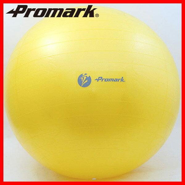 【PROMARK・プロマーク】 バランスボール55cm レベル1 tpt0251(スポーツ用品 ボール 球 運動用品 インナーマッスル 筋トレ トレーニング 筋肉 器具 ) 02P03Dec16